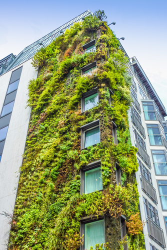 green building ecology