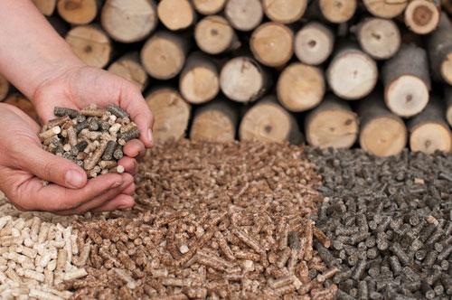 biomass renewable energy definition