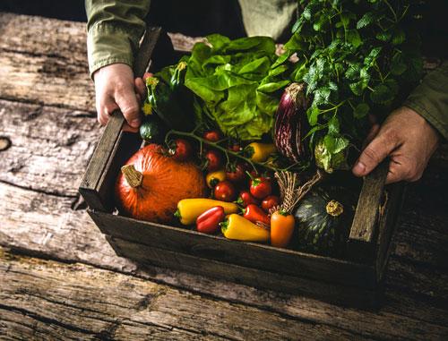 organic food pesticides