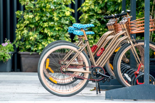 sustainability examples transportation