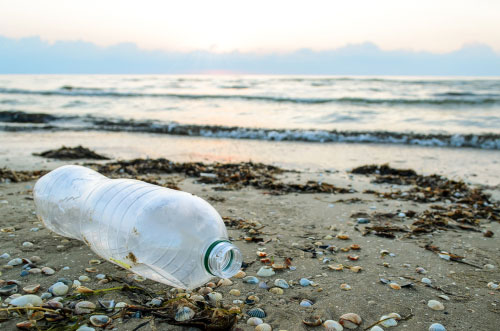 ocean protect pick plastic