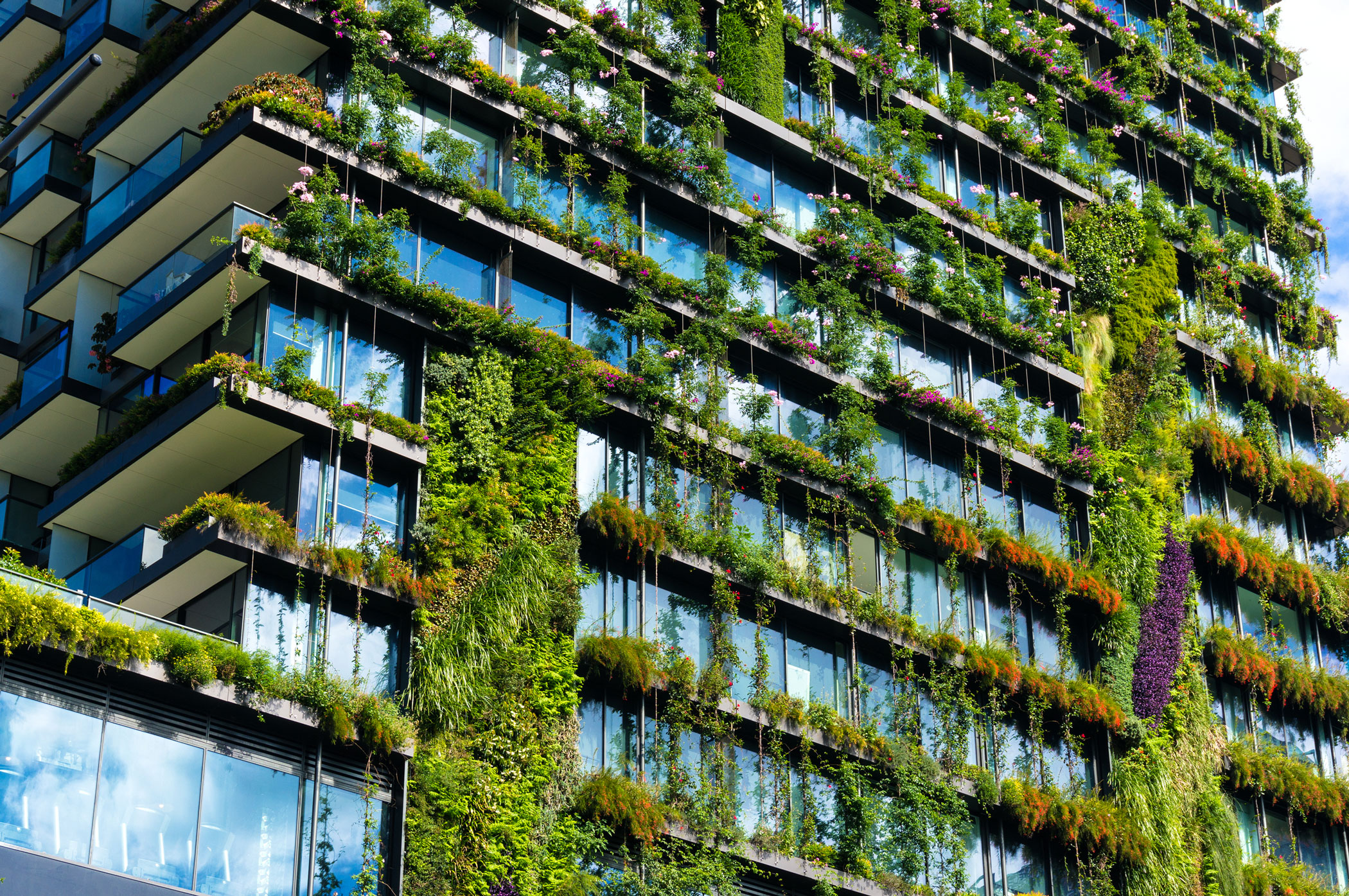green building certification