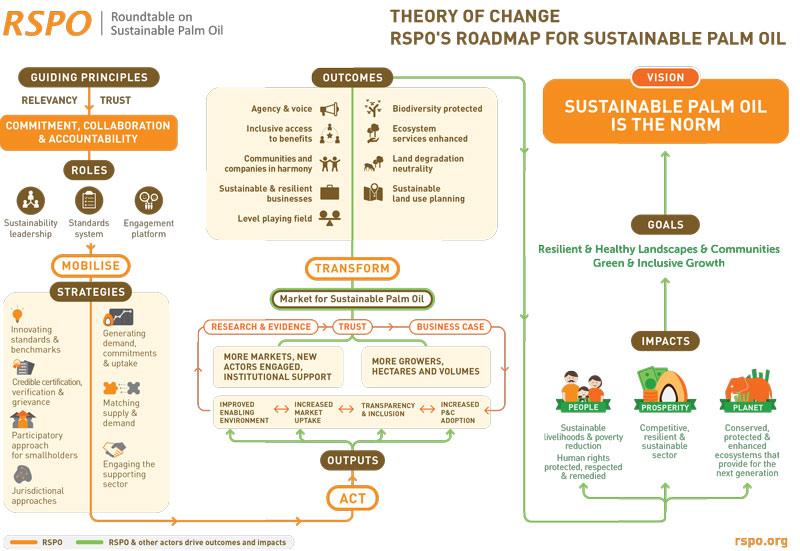 theory of change examples
