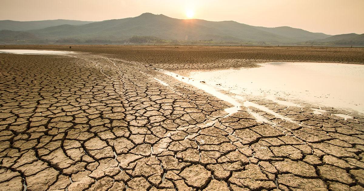 https://youmatter.world/app/uploads/sites/2/2020/06/drought-desertification-increase-climate.jpg