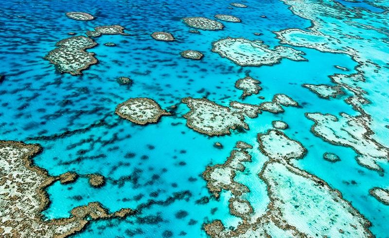 oceans réchauffement climatique causes conséquences