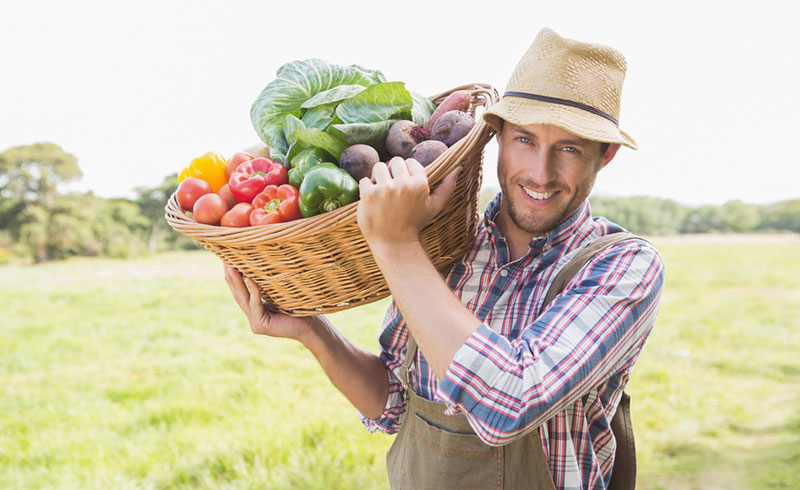 petites-fermes-agroecologie-faim-dans-le-monde-productivite