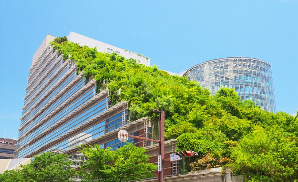 green-building-rentabilite-retour-sur-investissement