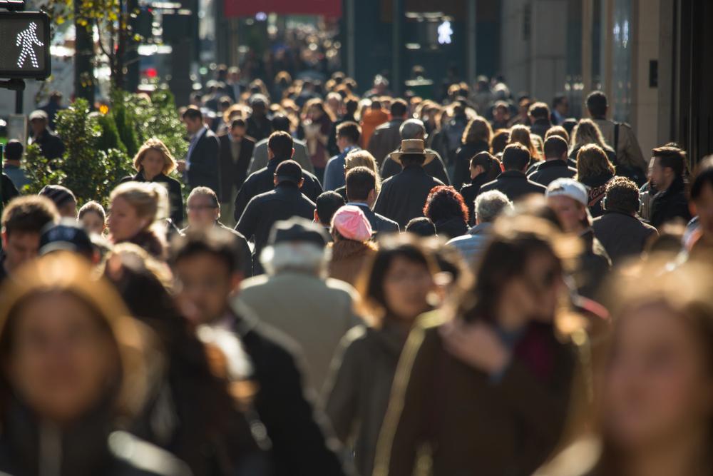 demographie population ecologie