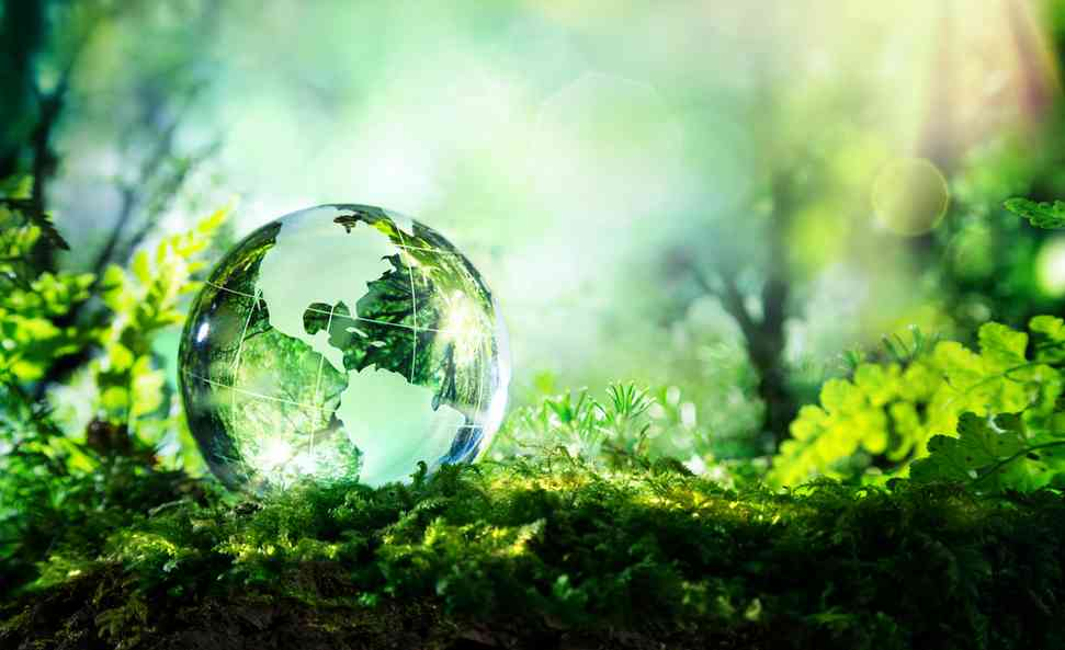 ecologie solutions