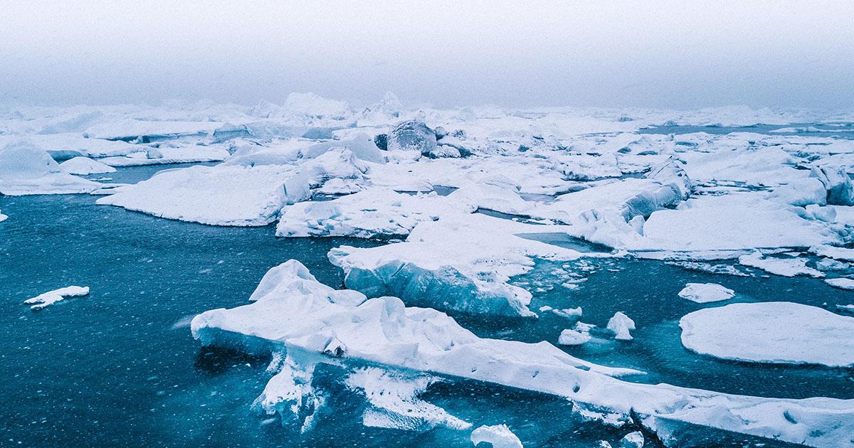 arctique acidification des océans