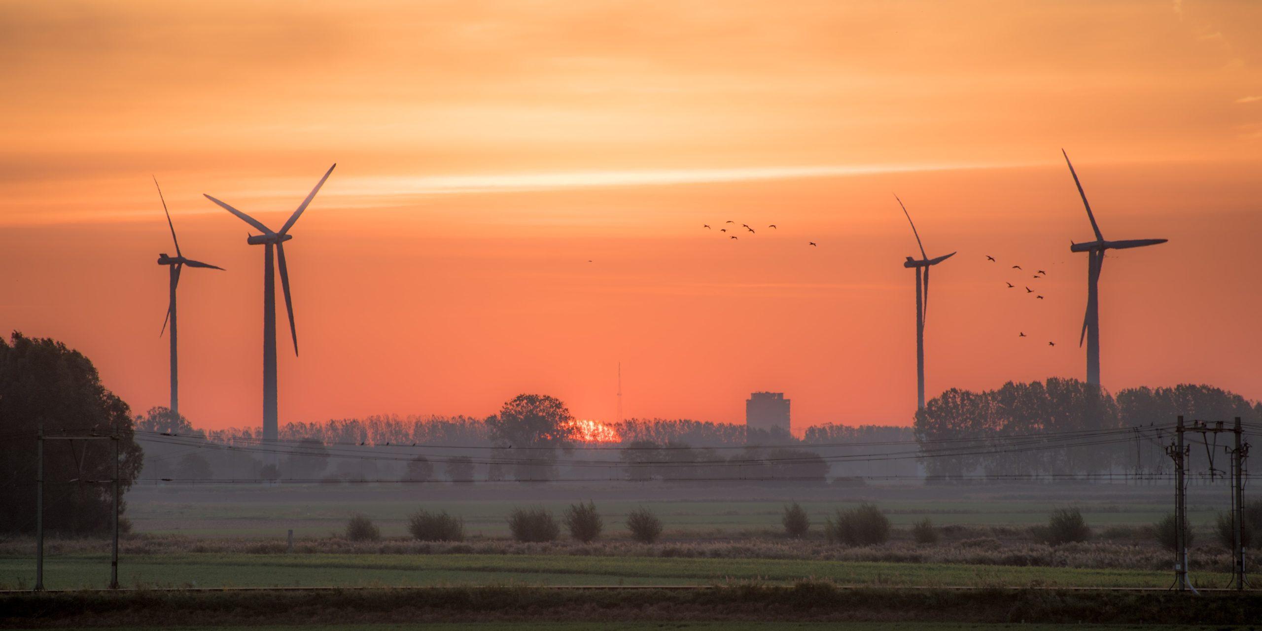 éoliennes proches d'une agglomération